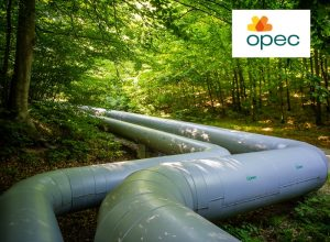 How to effectively manage network infrastructure in a heating company. Successful implementation in OPEC Gdynia
